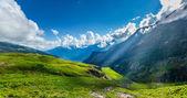 Panorama da montanha — Foto Stock