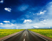 Road in blooming spring meadow — Stock Photo