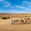 Stock Photo: Two cameleers with camels in dunes