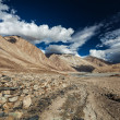 Stock Photo: Nubrvalley in Himalayas. Ladakh, India