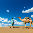 Stock Photo: Cameleer camel driver with camels