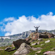 Happy tourist in mountains — Stockfoto