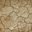 Cracked earth texture — Stock Photo #34472823