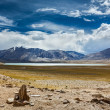 Stock Photo: Himalaylake Kyagar Tso, Ladakh, India