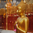 Standing Buddha statue — Stock Photo