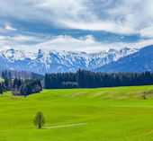 German idyllic pastoral countryside — Stock Photo