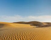 Dunes of Thar Desert — Stock Photo