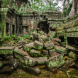 Ancient ruins of Ta Prohm temple, Angkor, Cambodia — Stock Photo