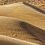 Dunes of Thar Desert, Rajasthan, India — Stock Photo #44919577
