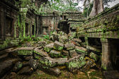 Ancient ruins of Ta Prohm temple, Angkor, Cambodia — Foto de Stock