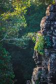 Rosto de bayon templo, angkor, Camboja — Fotografia Stock