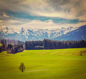 German idyllic pastoral countryside in spring with Alps — Stock Photo