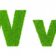 Grass letter W — Stock Photo #44920725