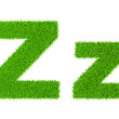 Grass letter Z — Stock Photo #44921259