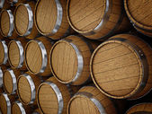 Wooden oak brandy wine beer barrels rows — Stock Photo