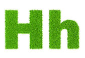 Grass letter H — Stock Photo