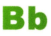 Grass letter B — Stock Photo
