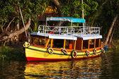 Bateau sur les backwaters du kerala. Kerala, Inde — Photo