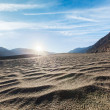 Sand dunes. Nubra valley, Ladakh, India — Stock Photo #45095997