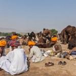 Indian men and camels at Pushkar camel fair (Pushkar Mela) — Stock Photo #45096393