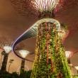 Garden by the Bay futuristic part night view, Singapore — Stock Photo #45097151