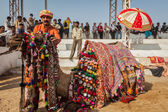 Man decorating his camel for camel decoration contest at Pushkar — Stock Photo