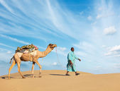 Cameleer (camel driver) with camels in Rajasthan, India — Stock Photo