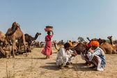 Uomini indiani e cammelli a pushkar camel fair (pushkar mela) — Foto Stock