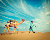 Cameleer (camel driver).  Rajasthan, India — Stock Photo