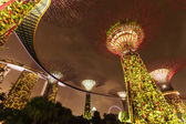 Garden by the Bay futuristic part night view, Singapore — Stock Photo