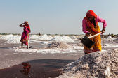 Women mining salt at lake Sambhar, Rajasthan, India — Stock Photo