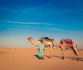 Cameleer (camel driver) . Rajasthan, India — Stock Photo