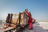 Woman mining salt at lake Sambhar, Rajasthan, India — Stock Photo