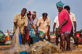 Indian fishermen examining their catch in fishing net — Stock Photo