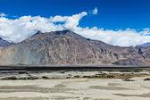 Nubra valley in Himalayas. Ladakh, India — Stock Photo