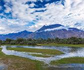 Nubra valley, Ladakh, India — Stock Photo