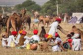 Os homens indianos e camelos em pushkar camel justo (pushkar mela) — Foto Stock