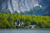 Castle at Hallstatter See in Austria — Foto Stock
