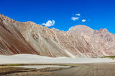 Sand dunes. Nubra valley, India — Stok fotoğraf