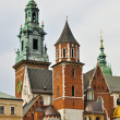 Wawel Cathedral — Stock Photo #12495288