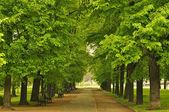 Parque de la ciudad europea — Foto de Stock