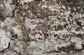 Old wall texture — Foto Stock