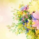Summer flowers — Stock Photo #22367693