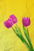 Tulip flowers background — Photo