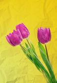 郁金香鲜花背景 — 图库照片