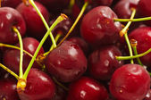 Sweet cherry background — Stok fotoğraf