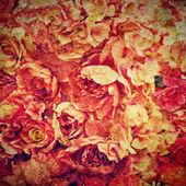 Fond rose — Photo