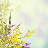 Floral holiday background — Stock Photo