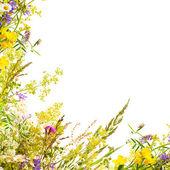 Floral pasen achtergrond — Stockfoto