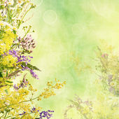 Floral easter background — Stock Photo